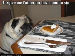 funny_dog2