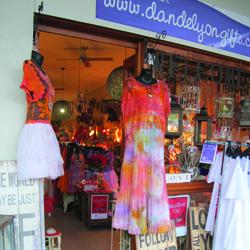 Front-facing shot of Dandelyon store, Brisbane