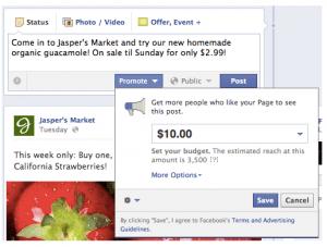 Facebook Promoted Post screenshot