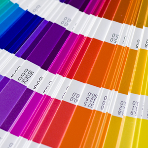 Pantone cards splayed out