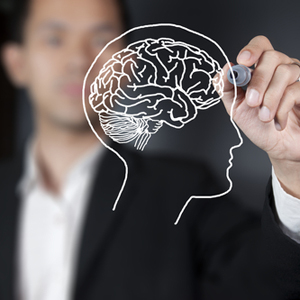 Business man drawing outline of a brain