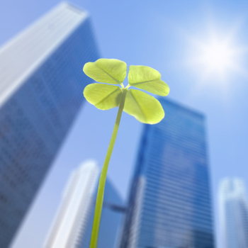 Four leafed clover, in front of high-rise buildings
