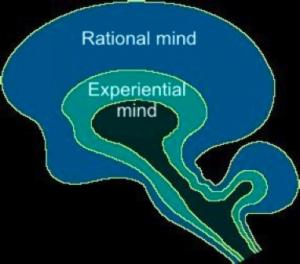 Rational mind imade
