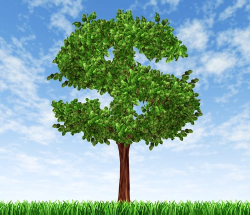 tree in a dollar sign