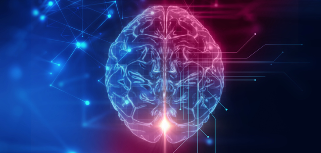 Leader brain